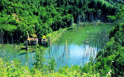 lago corniolo - camminate fotografiche